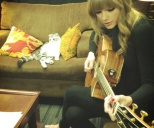 taylor-swift-cat-5